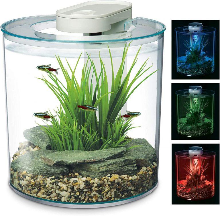 Marina 360 Aquarium with Remote Control LED Lighting