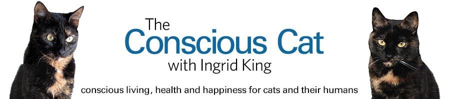 conscious cat logo
