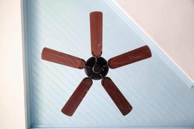 Ceiling fan pic