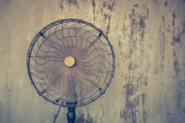 Electrical fan pic
