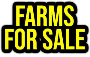 farms for sale PNG